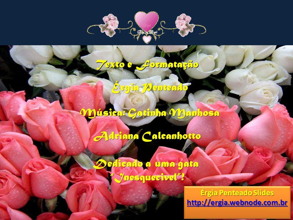 Texto e Formatação Érgia Penteado Música: Gatinha Manhosa Adriana Calcanhotto Érgia Penteado Slides http://ergia.webnode.com.br Érgia Penteado Slides http://ergia.webnode.com.br Dedicado a uma gata Inesquecivel!
