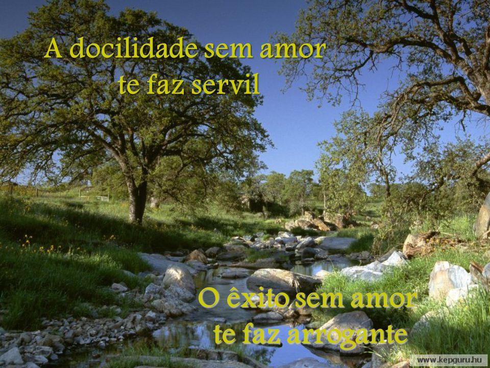 A autoridade sem amor te faz tirano O trabalho sem amor te faz escravo te faz escravo