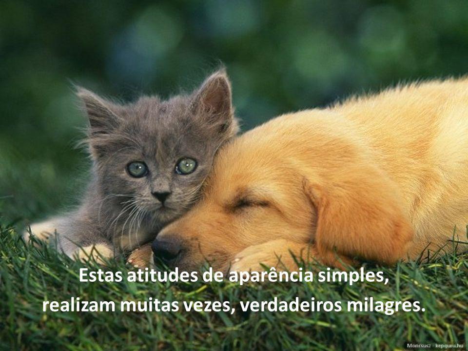 Estas atitudes de aparência simples, realizam muitas vezes, verdadeiros milagres.