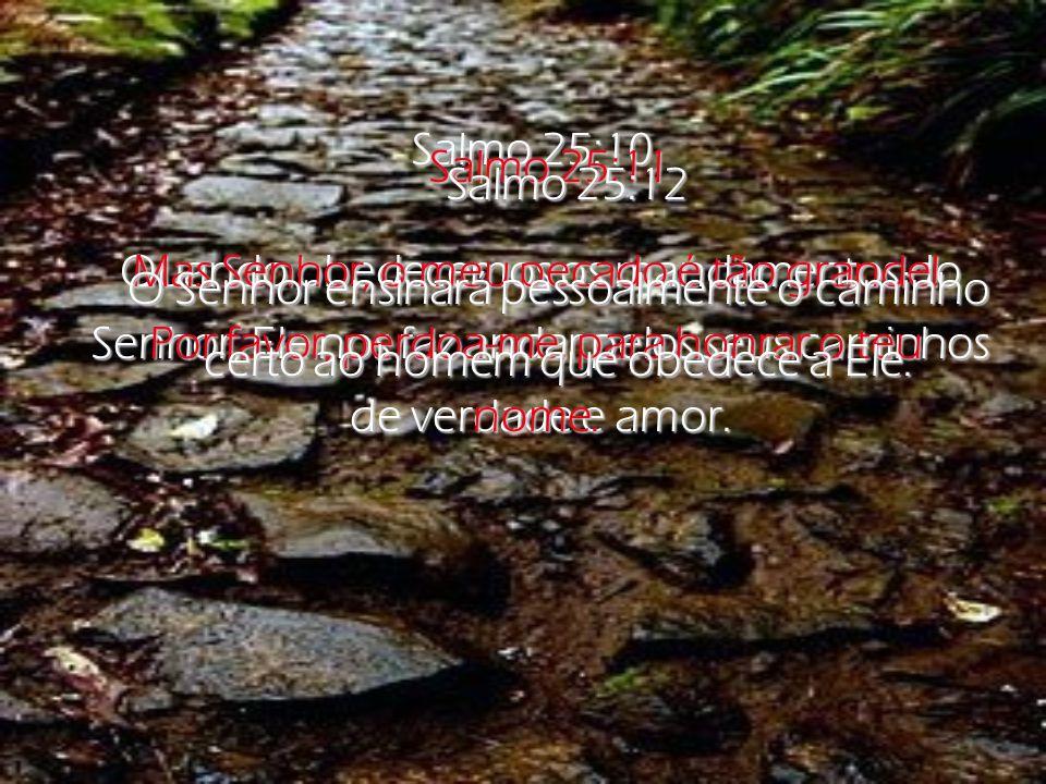 Salmo 25:4-5 Senhor, mostra-me quais são os teus caminhos; ensina-me por onde devo andar.