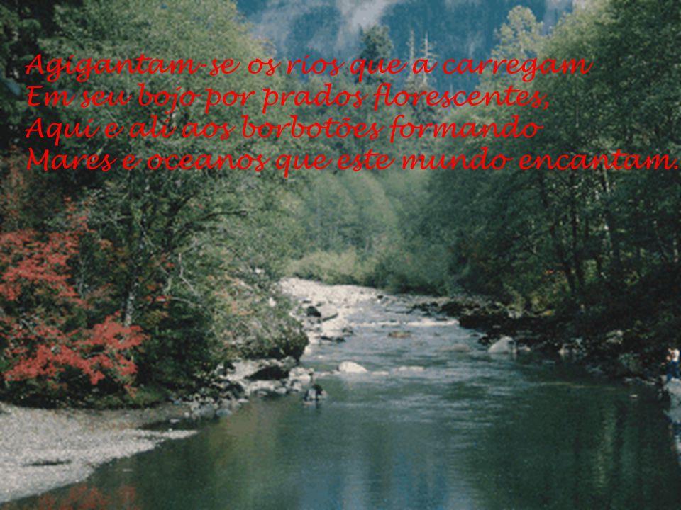Agigantam-se os rios que a carregam Em seu bojo por prados florescentes, Aqui e ali aos borbotões formando Mares e oceanos que este mundo encantam.