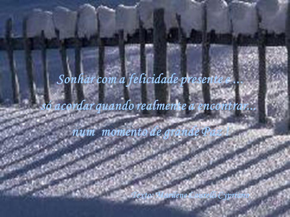 Sonhar com a felicidade presente e...só acordar quando realmente a encontrar...