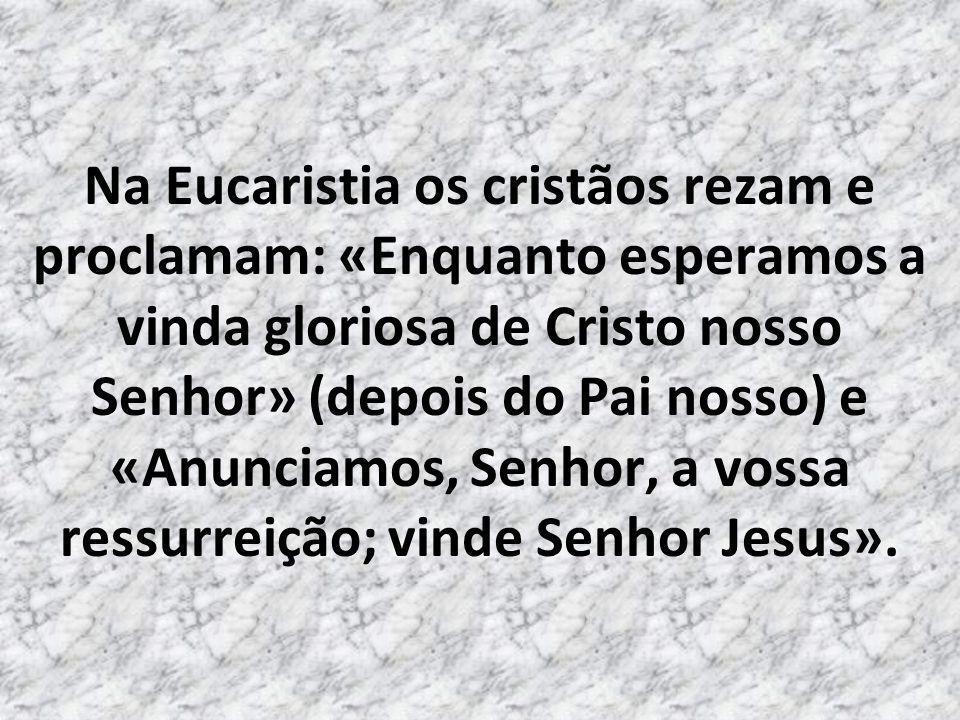 Se trata de esperar a Vinda Solene e Triunfal de Jesus!