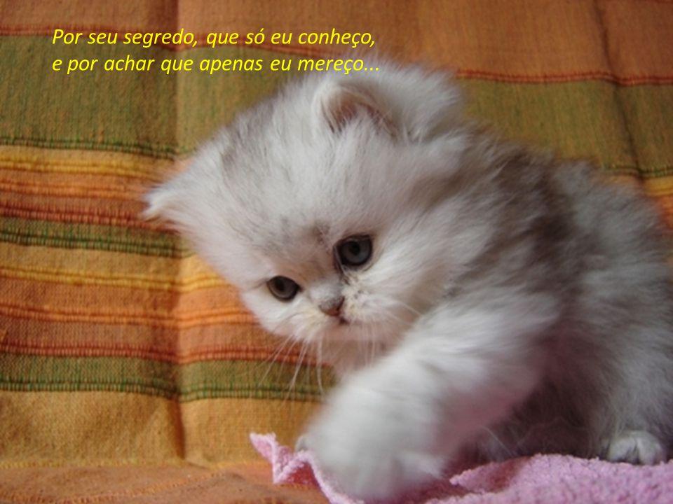 Por repreender-me, quando estou errado, por meu segredo, sempre bem guardado...