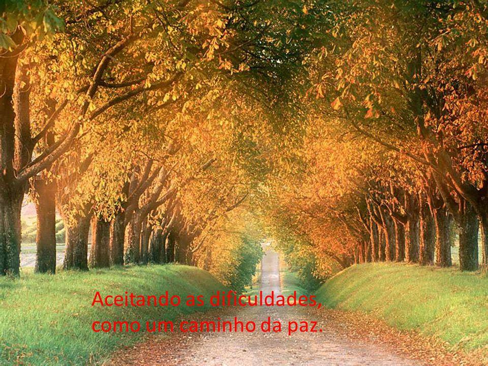 Aceitando as dificuldades, como um caminho da paz.