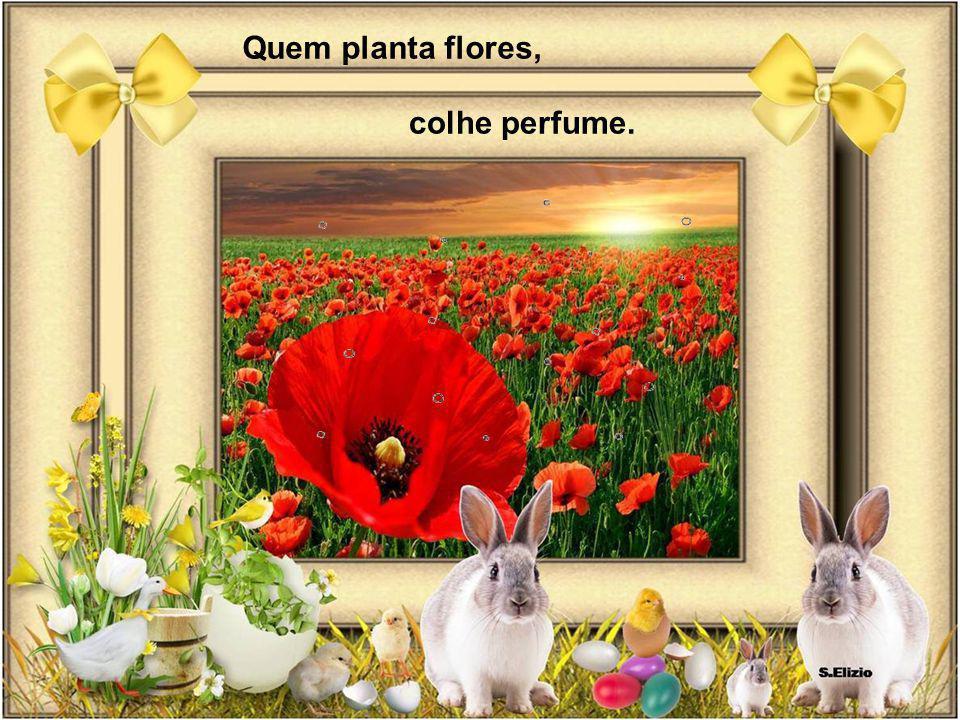 Quem planta flores, colhe perfume.