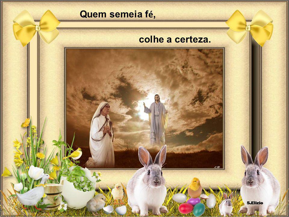 Apresentação e arranjos: Maria Salete Elizio de Carvalho Cacoal/RO
