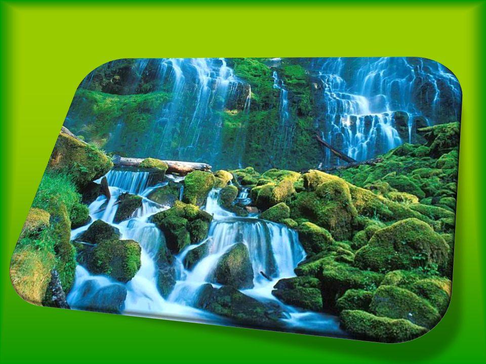 Perderia sua canção se fossem tiradas as pedras do seu caminho São os obstáculos que fazem suas águas prosseguirem. Nenhuma rocha, por mais resistente
