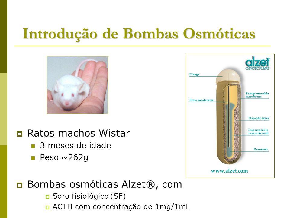 Introdução de Bombas Osmóticas Ratos machos Wistar 3 meses de idade Peso ~262g Bombas osmóticas Alzet®, com Soro fisiológico (SF) ACTH com concentração de 1mg/1mL