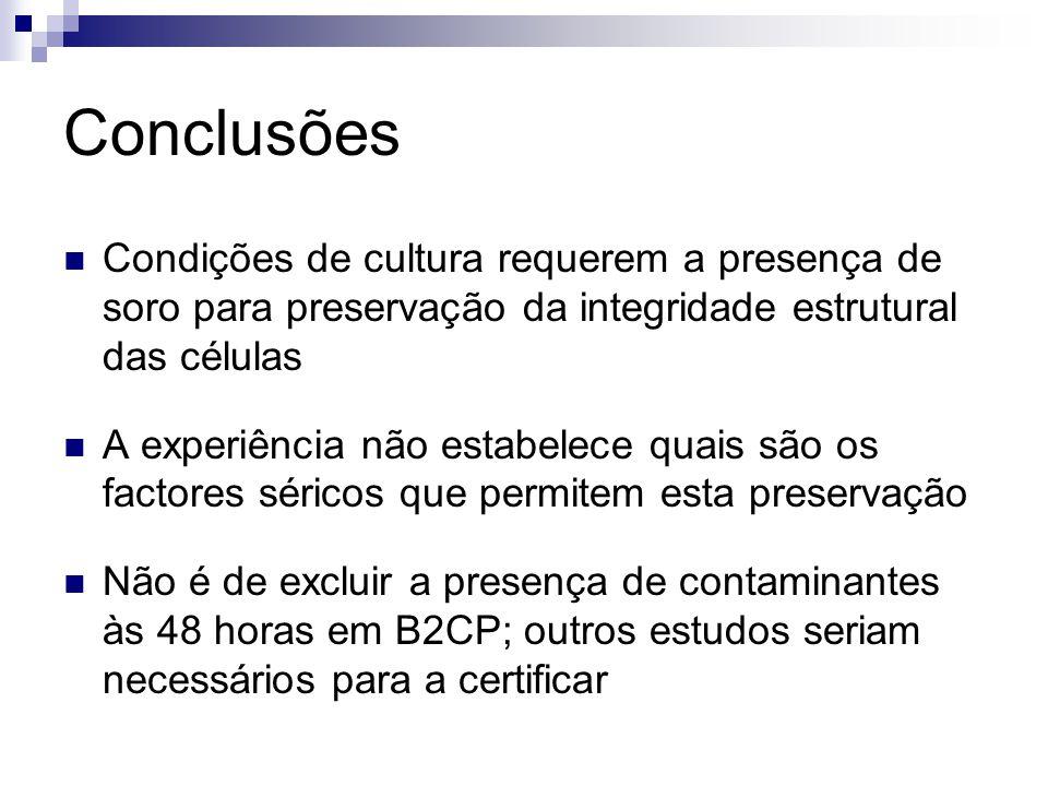 Conclusões Condições de cultura requerem a presença de soro para preservação da integridade estrutural das células A experiência não estabelece quais