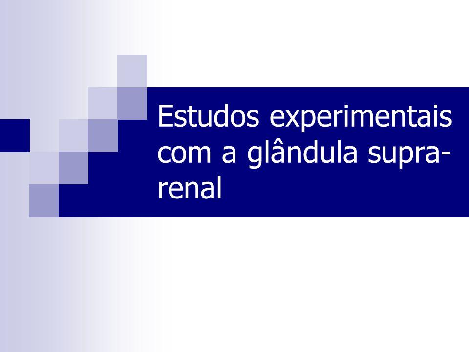 Estudos experimentais com a glândula supra- renal