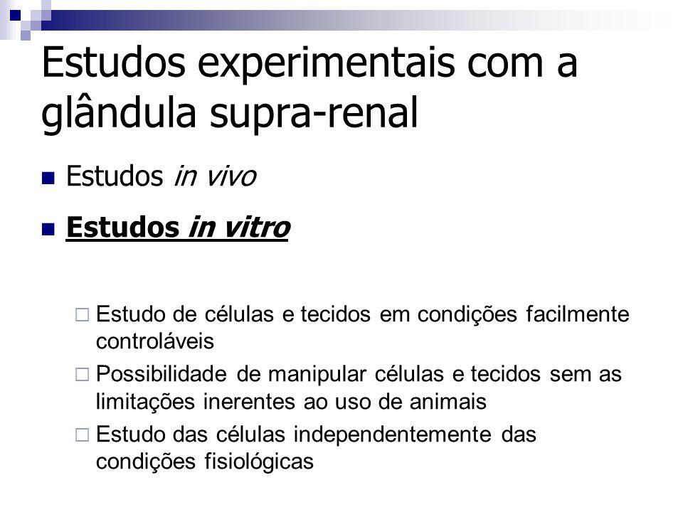 Estudos experimentais com a glândula supra-renal Estudos in vivo Estudos in vitro Estudo de células e tecidos em condições facilmente controláveis Pos