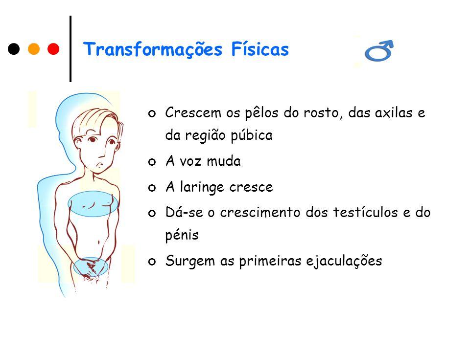 Transformações Físicas Crescem os pêlos do rosto, das axilas e da região púbica A voz muda A laringe cresce Dá-se o crescimento dos testículos e do pénis Surgem as primeiras ejaculações