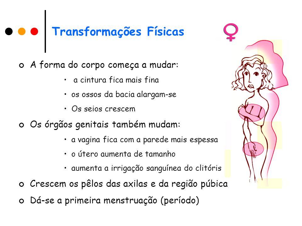 Transformações Físicas A forma do corpo começa a mudar: a cintura fica mais fina os ossos da bacia alargam-se Os seios crescem Os órgãos genitais também mudam: a vagina fica com a parede mais espessa o útero aumenta de tamanho aumenta a irrigação sanguínea do clitóris Crescem os pêlos das axilas e da região púbica Dá-se a primeira menstruação (período)