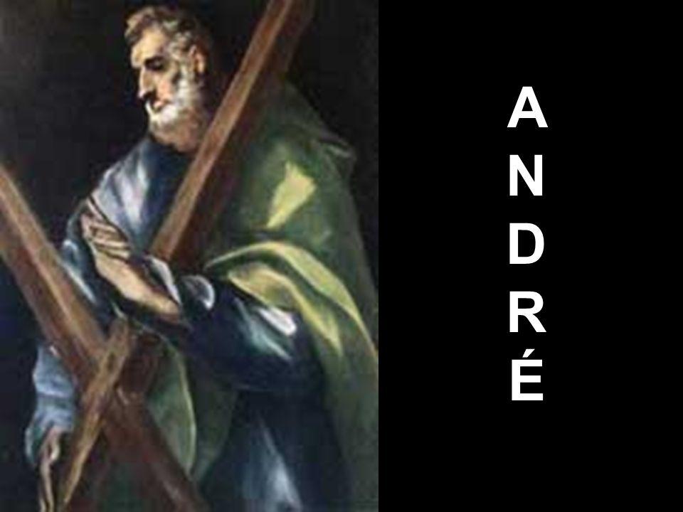 ANDRÉANDRÉ