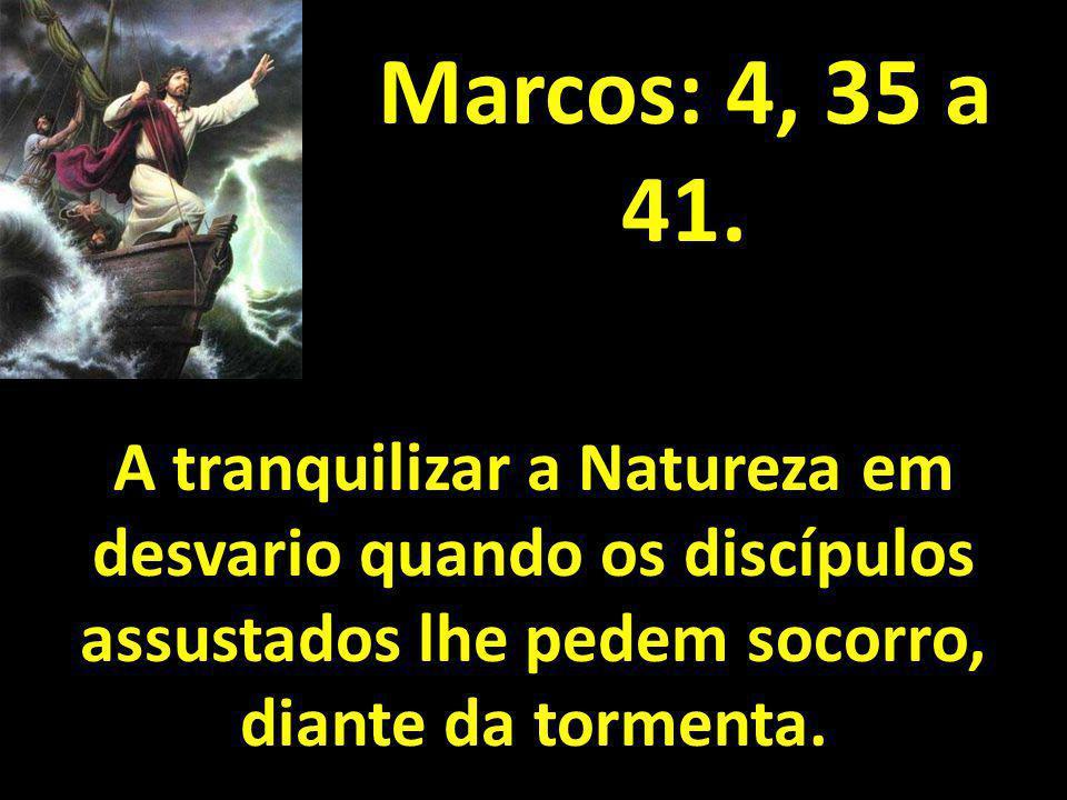 Marcos: 4, 35 a 41. A tranquilizar a Natureza em desvario quando os discípulos assustados lhe pedem socorro, diante da tormenta.