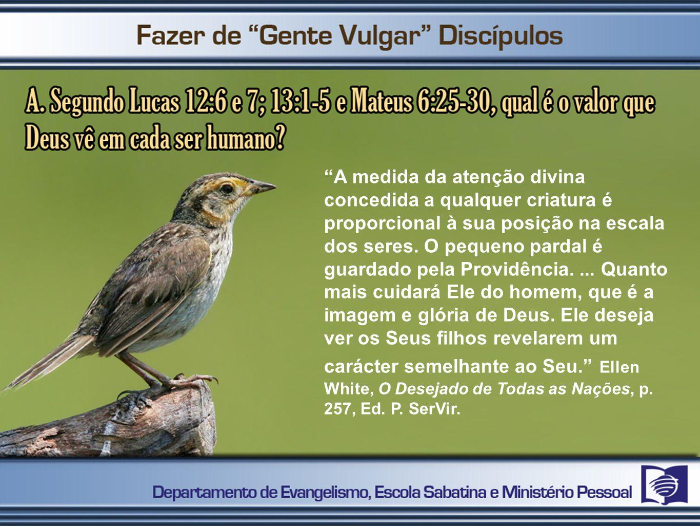 A medida da atenção divina concedida a qualquer criatura é proporcional à sua posição na escala dos seres. O pequeno pardal é guardado pela Providênci