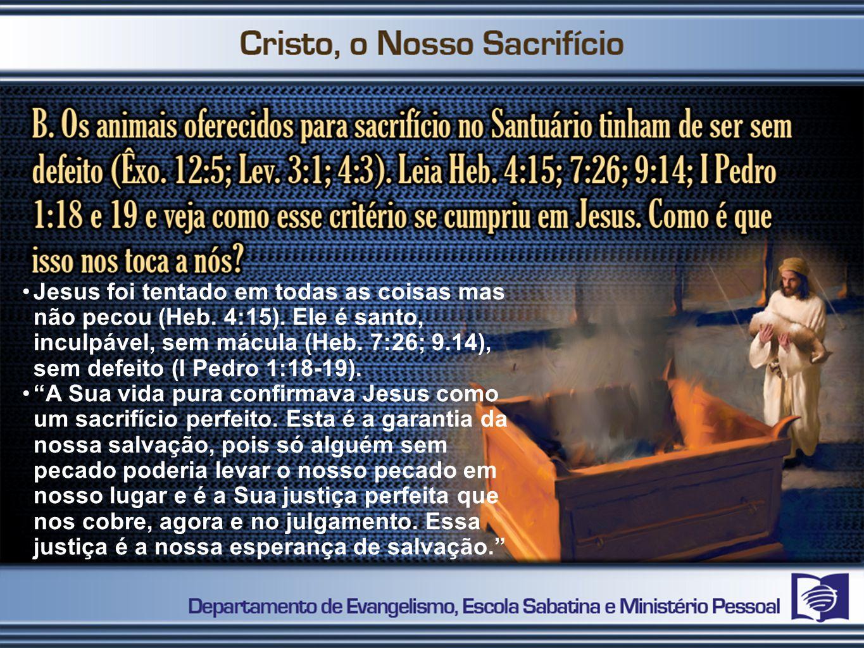 2º PASSO Perceber que o amor sacrificial de Jesus reabilita e transforma pecadores