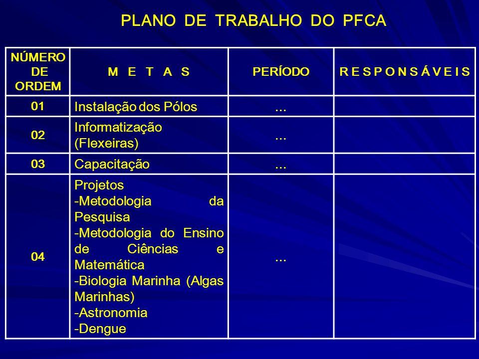 PLANO DE TRABALHO DO PFCA NÚMERO DE ORDEM M E T A SPERÍODOR E S P O N S Á V E I S 01 Instalação dos Pólos...