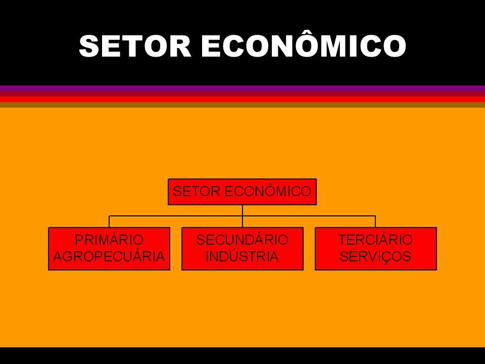 SETOR ECONÔMICO