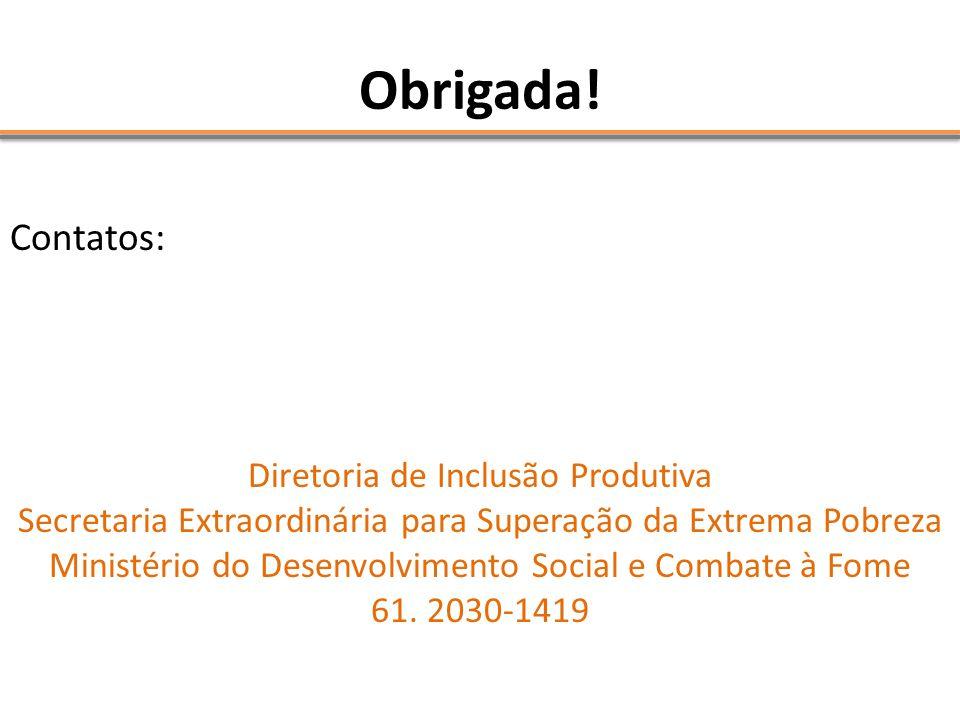 Obrigada! Contatos: Diretoria de Inclusão Produtiva Secretaria Extraordinária para Superação da Extrema Pobreza Ministério do Desenvolvimento Social e