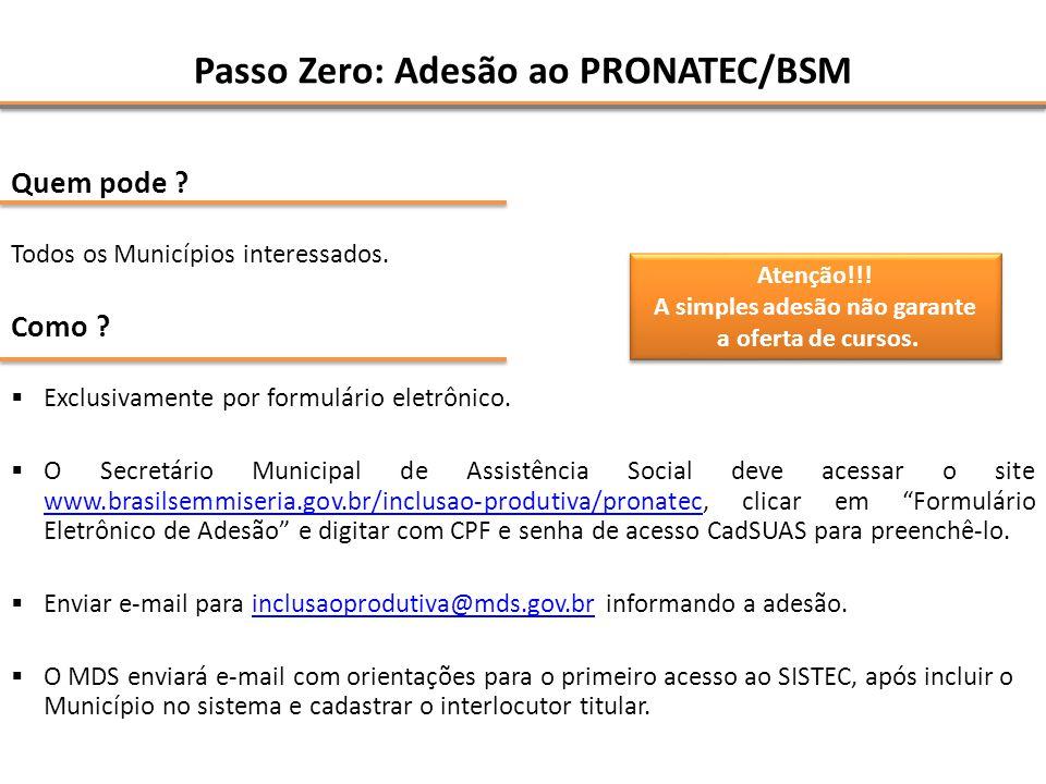 Passo Zero: Adesão ao PRONATEC/BSM Quem pode ? Todos os Municípios interessados. Como ? Exclusivamente por formulário eletrônico. O Secretário Municip