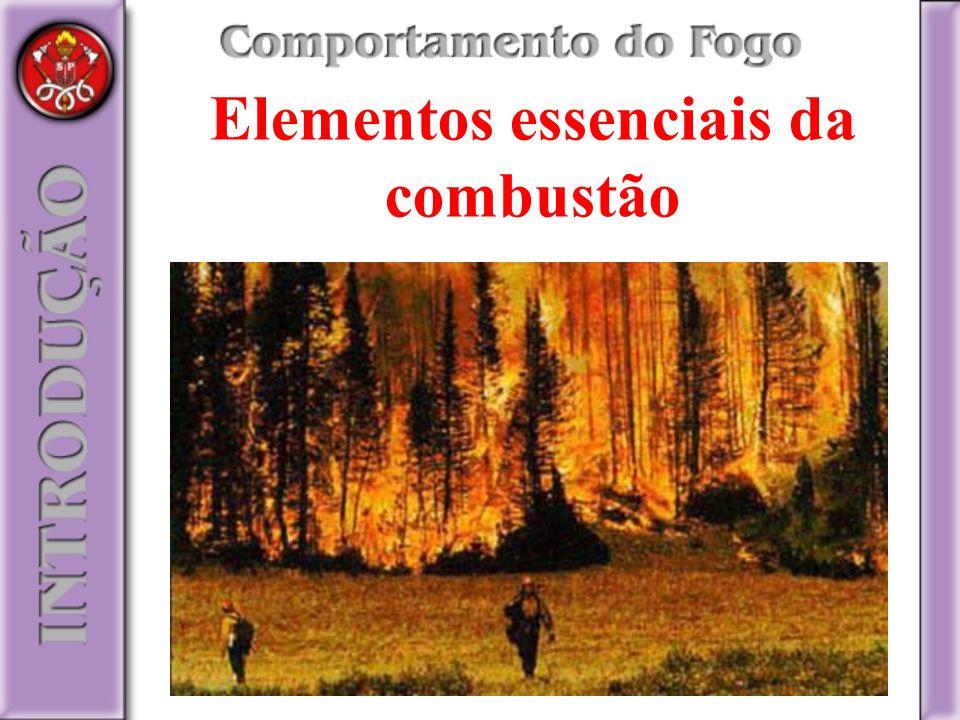 Elementos essenciais da combustão