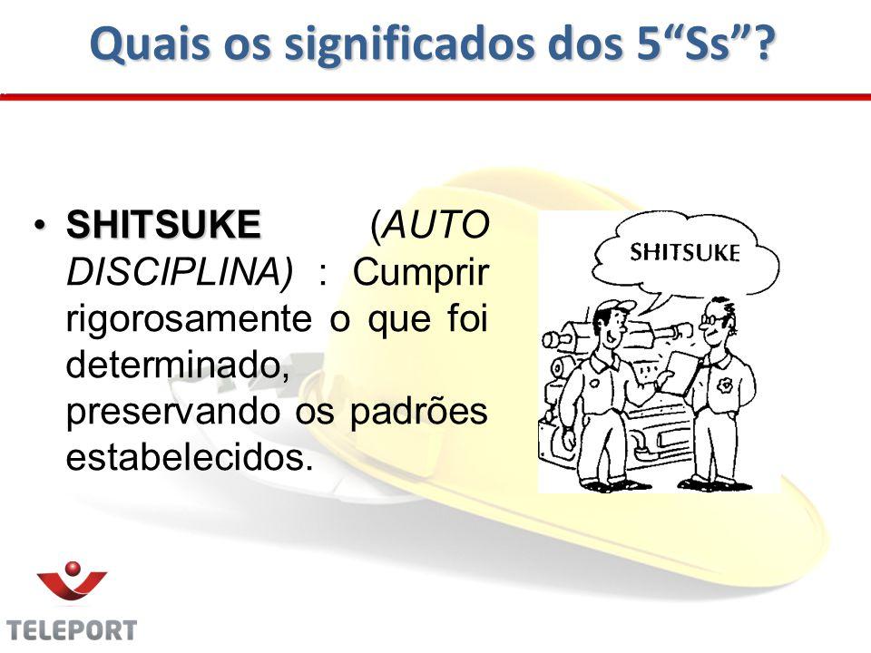 Quais os significados dos 5Ss? SHITSUKESHITSUKE (AUTO DISCIPLINA) : Cumprir rigorosamente o que foi determinado, preservando os padrões estabelecidos.