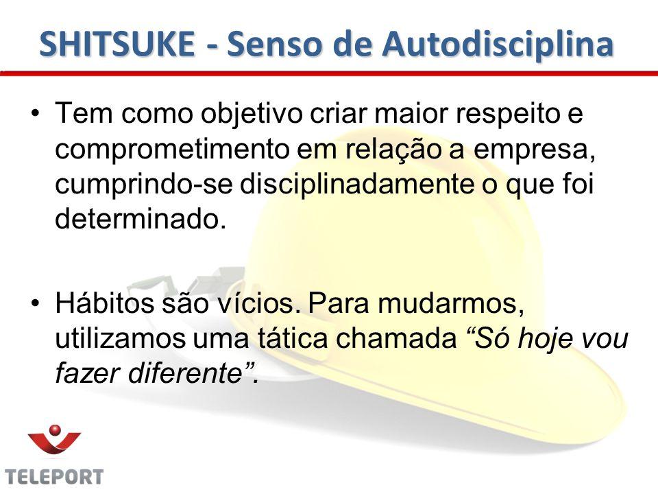 SHITSUKE - Senso de Autodisciplina Tem como objetivo criar maior respeito e comprometimento em relação a empresa, cumprindo-se disciplinadamente o que foi determinado.