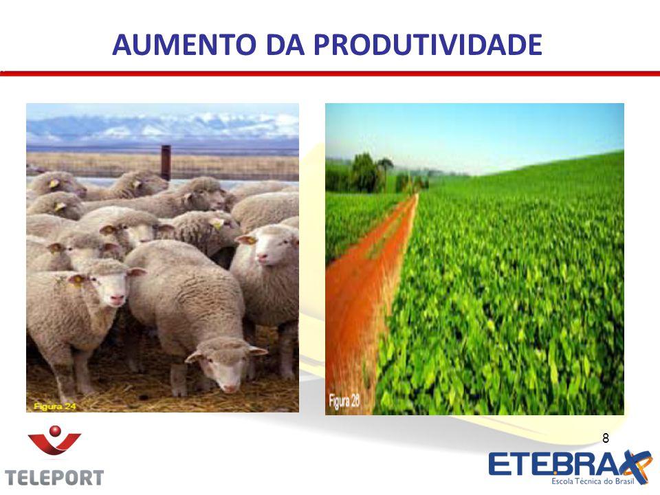 8 AUMENTO DA PRODUTIVIDADE