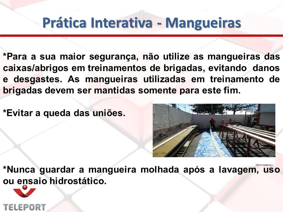 Prática Interativa - Mangueiras *Não armazenar sob a ação direta dos raios solares e/ou vapores de produtos químicos agressivos. *Não utilizar a mangu