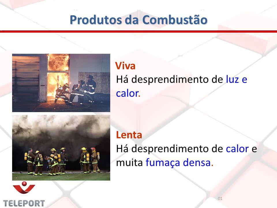 Produtos da Combustão 01 Viva Há desprendimento de luz e calor. Lenta Há desprendimento de calor e muita fumaça densa.