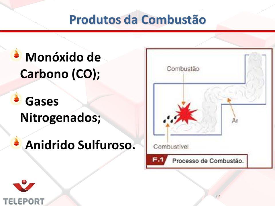 Produtos da Combustão Monóxido de Carbono (CO); Gases Nitrogenados; Anidrido Sulfuroso. 01