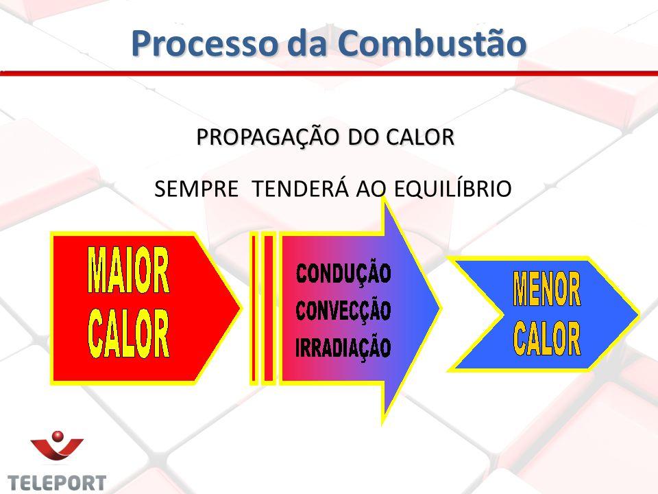 Processo da Combustão SEMPRE TENDERÁ AO EQUILÍBRIO PROPAGAÇÃO DO CALOR