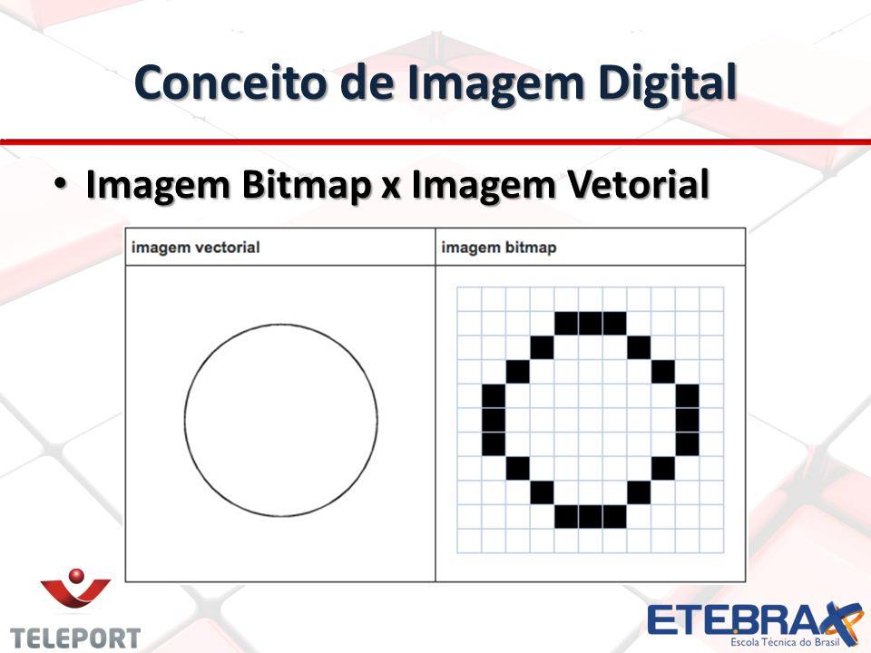 Conceito de Imagem Digital Imagem Bitmap x Imagem Vetorial Imagem Bitmap x Imagem Vetorial
