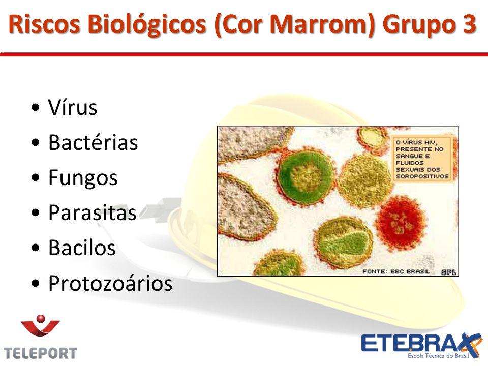 Riscos Biológicos (Cor Marrom) Grupo 3 Vírus Bactérias Fungos Parasitas Bacilos Protozoários