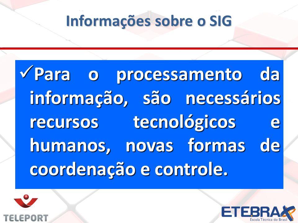 P Para o processamento da informação, são necessários recursos tecnológicos e humanos, novas formas de coordenação e controle. Informações sobre o SIG