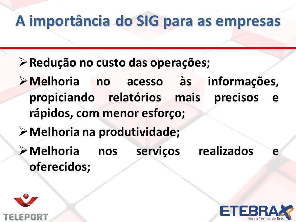 A importância do SIG para as empresas Redução no custo das operações; Melhoria no acesso às informações, propiciando relatórios mais precisos e rápido