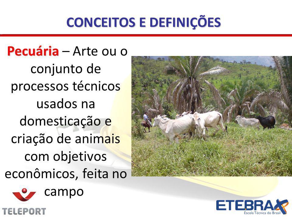 CONCEITOS E DEFINIÇÕES Pecuária Pecuária – Arte ou o conjunto de processos técnicos usados na domesticação e criação de animais com objetivos econômic