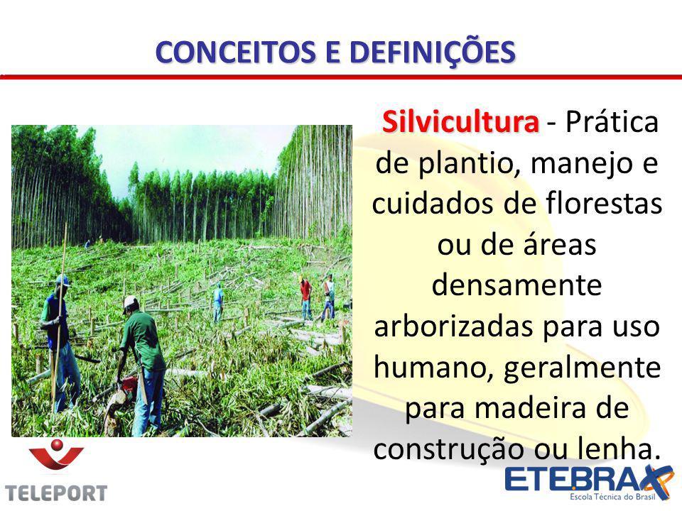 CONCEITOS E DEFINIÇÕES Silvicultura Silvicultura - Prática de plantio, manejo e cuidados de florestas ou de áreas densamente arborizadas para uso huma
