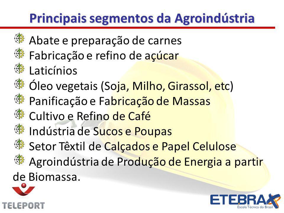 Principais segmentos da Agroindústria Abate e preparação de carnes Fabricação e refino de açúcar Laticínios Óleo vegetais (Soja, Milho, Girassol, etc)