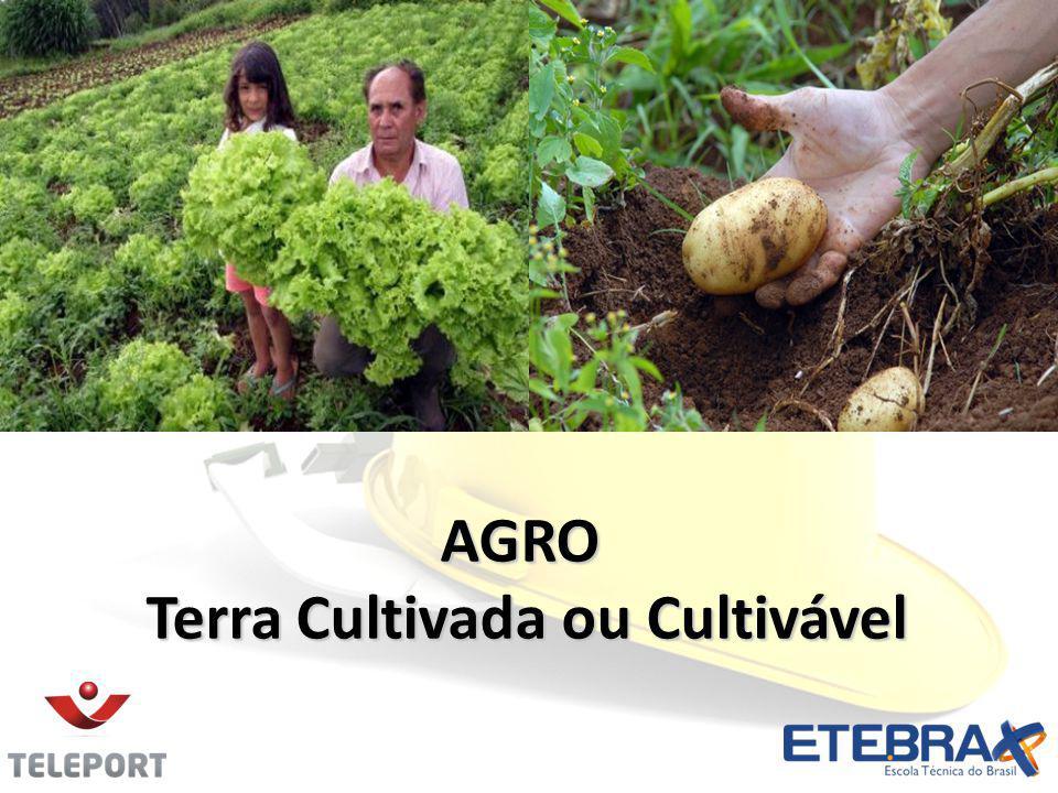 AGRO Terra Cultivada ou Cultivável