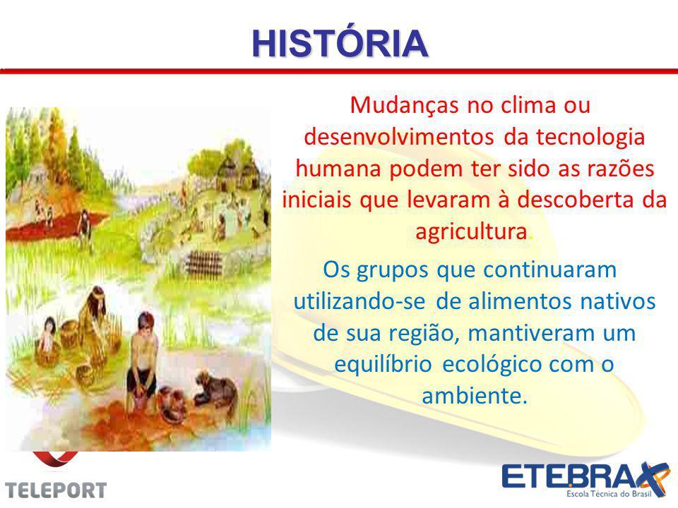 HISTÓRIA A nova sociedade agrícola que se formou, desmatava a vegetação nativa para implantar a monocultura, na procura de maior quantidade com menor variedade.