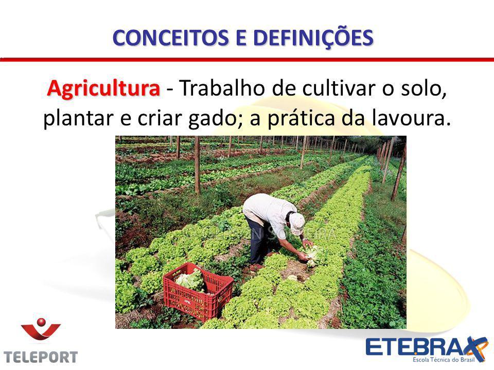 CONCEITOS E DEFINIÇÕES Agricultura Agricultura - Trabalho de cultivar o solo, plantar e criar gado; a prática da lavoura.