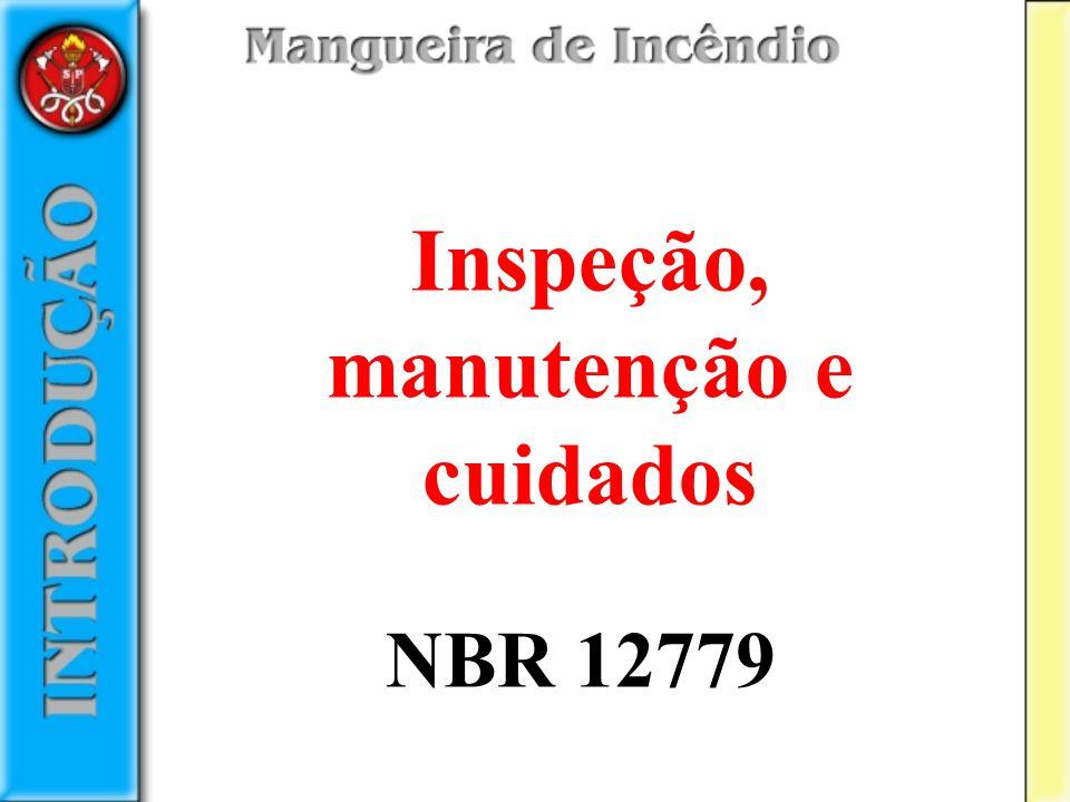 Inspeção, manutenção e cuidados NBR 12779