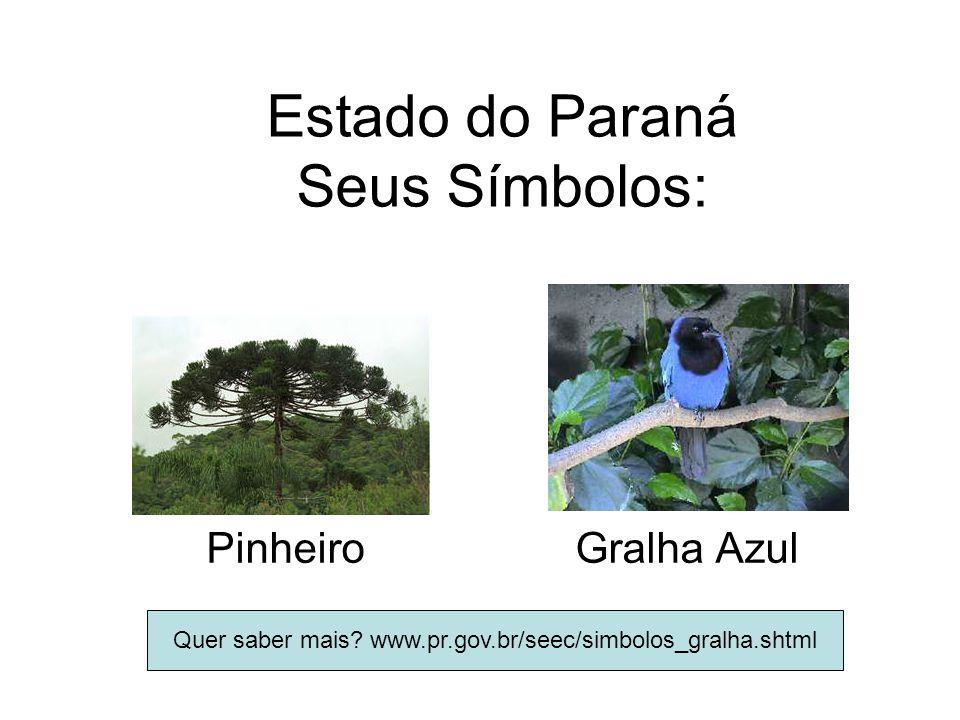 Estado do Paraná Seus Símbolos: Pinheiro Gralha Azul Quer saber mais? www.pr.gov.br/seec/simbolos_gralha.shtml