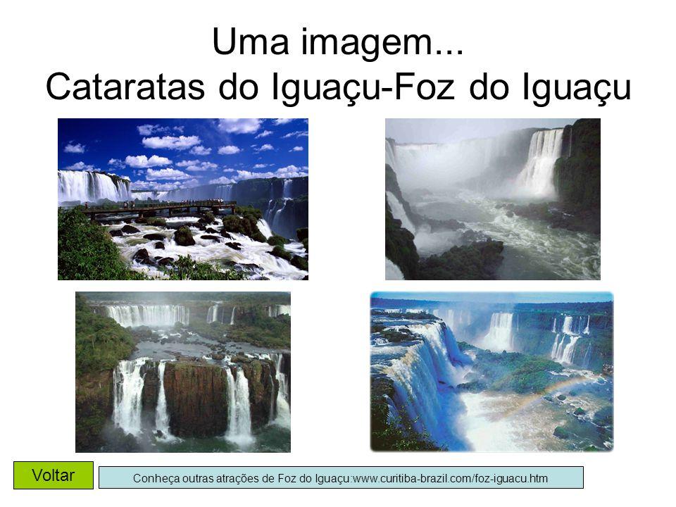 Uma imagem... Cataratas do Iguaçu-Foz do Iguaçu Conheça outras atrações de Foz do Iguaçu:www.curitiba-brazil.com/foz-iguacu.htm Voltar