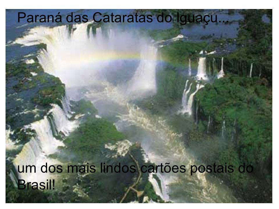 Paraná das Cataratas do Iguaçu... um dos mais lindos cartões postais do Brasil!