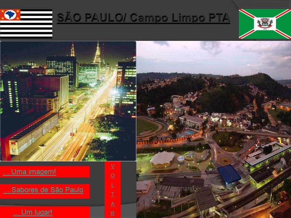 Principais pontos turísticos da cidade de São Paulo: 1-)Monumento da Independência 2-)Teatro Municipal 3-)Estação da Luz 4-) Parque do Ibirapuera Fecharvoltar