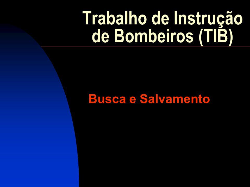 Trabalho de Instrução de Bombeiros (TIB) Busca e Salvamento